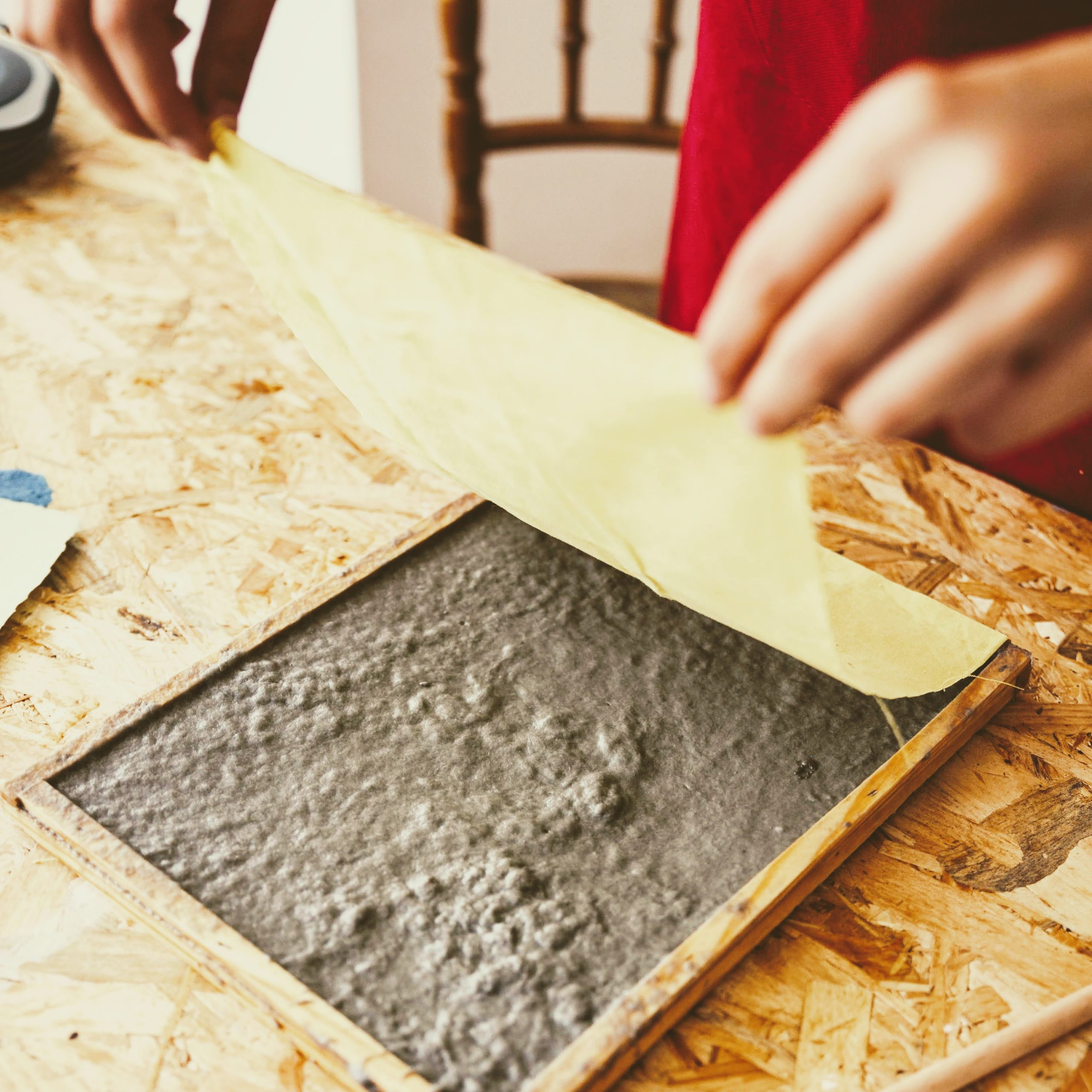 seeded paper product being made