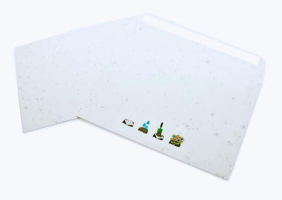 seeded paper envelopes